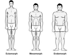 morfotipi